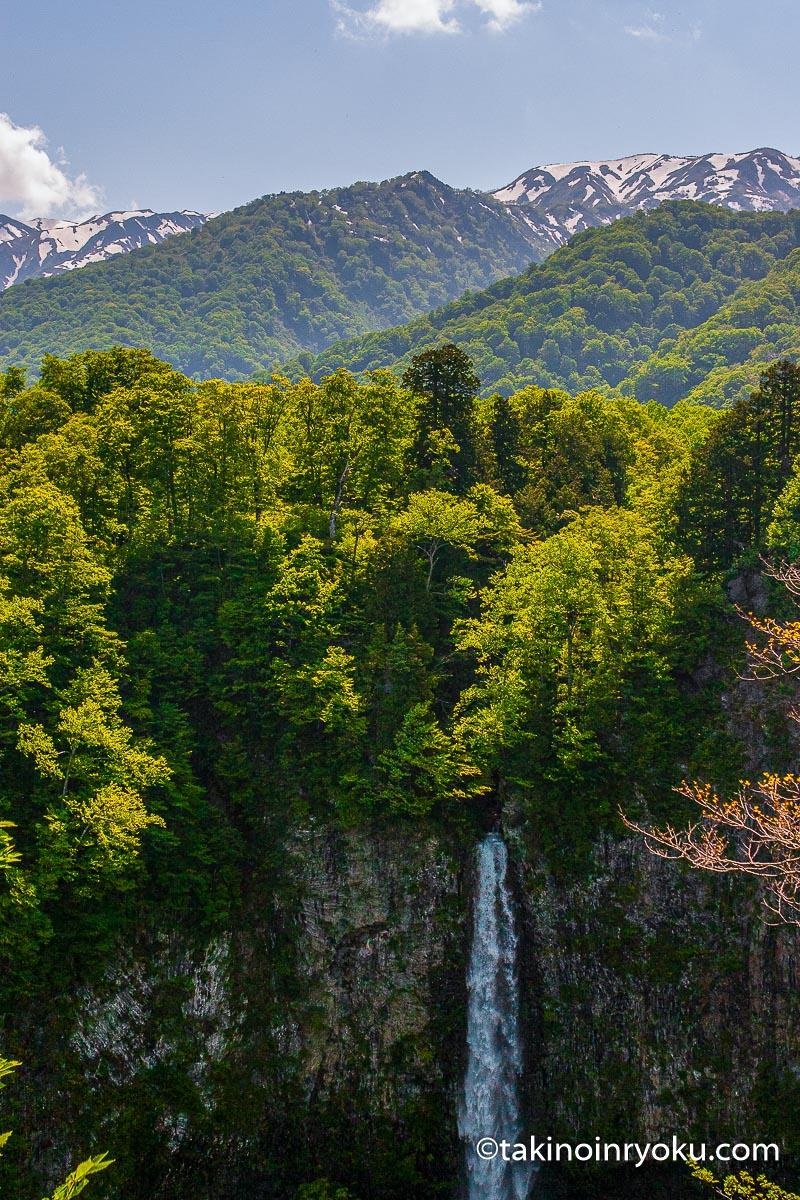 岐阜県-白水の滝(大野郡白川村)